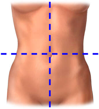 Abdominal Quadrants (Female)
