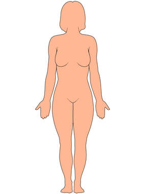 Female Figure Outline, Anterior View