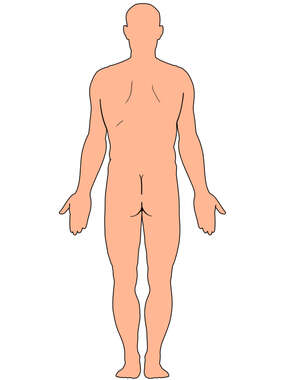 Male Figure Outline, Posterior