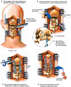 Cervical/Occiptal Fusion