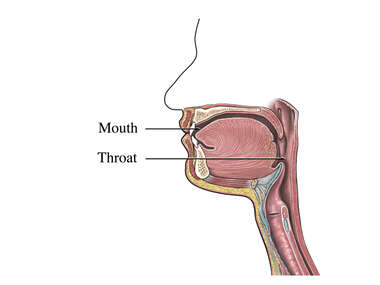 dry mouth and throat