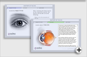 Interactive Anatomy of the Eye